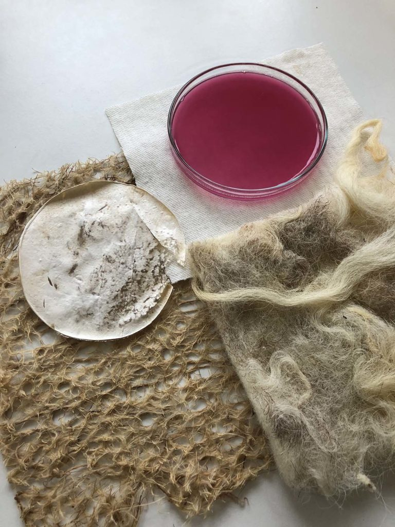 Living Colour New Materials by Laura Luchtman and Ilfa Siebenhaar